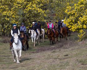 Burnelee Excursions on Horseback - Accommodation Find