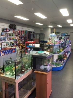 Nambour Pet Shop - Accommodation Find