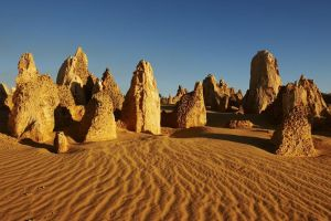 Pinnacles Day Trip from Perth Including Yanchep National Park - Accommodation Find