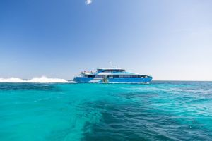 Fremantle to Rottnest Island Roundtrip Ferry Ticket - Accommodation Find